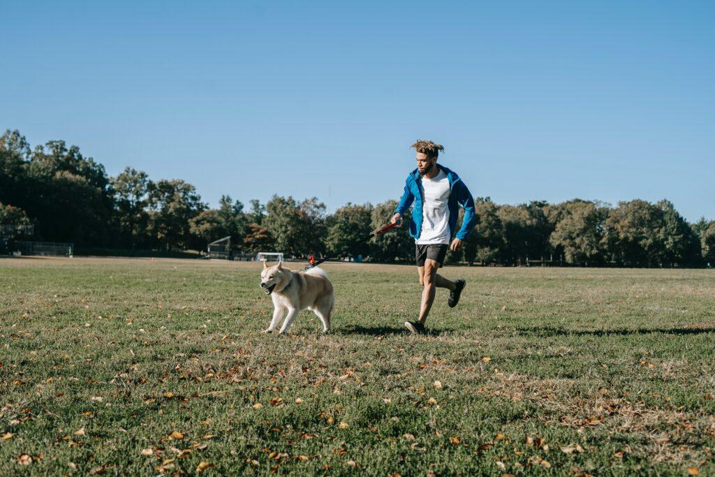 Hombre paseando a perro en parque a medio día. Cosas que hacer antes de que haga calor