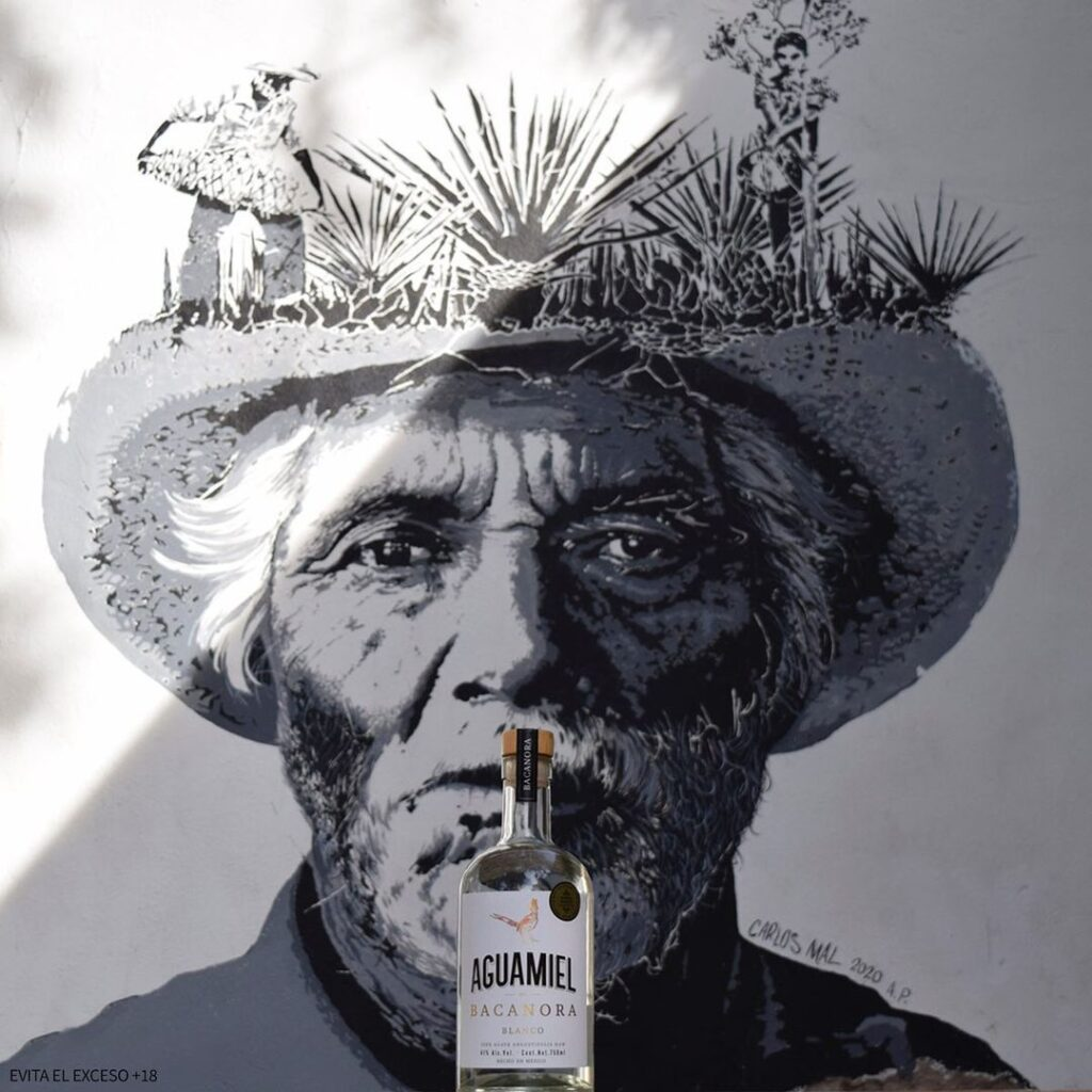 Mural de retrato de un anciano con un sombrero, en la parte superior del sombre se nota que hay siembra de agave de bacanora (el mural es en blanco y negro). Frente a este mural se observa una botella trasparente con etiqueta color blanco y letras color negro.