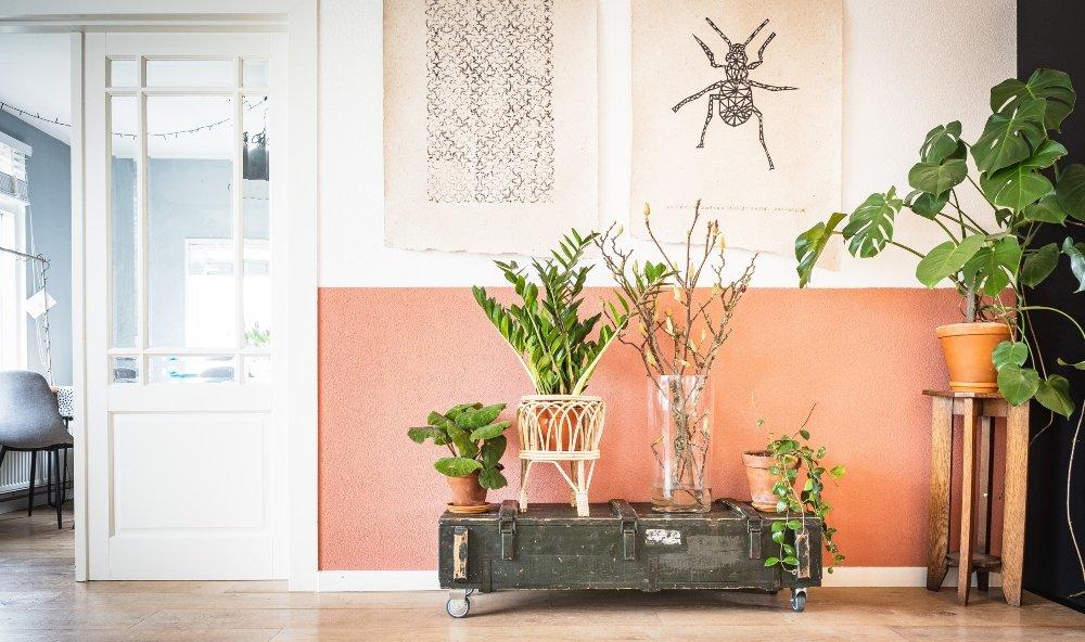 pared rosa con blanco con tapices colgando de la figura de un insecto y una red de color negro; en el piso una caja de madera sobra la que hay cuatro plantas y a un costado otro mueble de madera en la que está otra maceta color naranja con planta de hojas grandes
