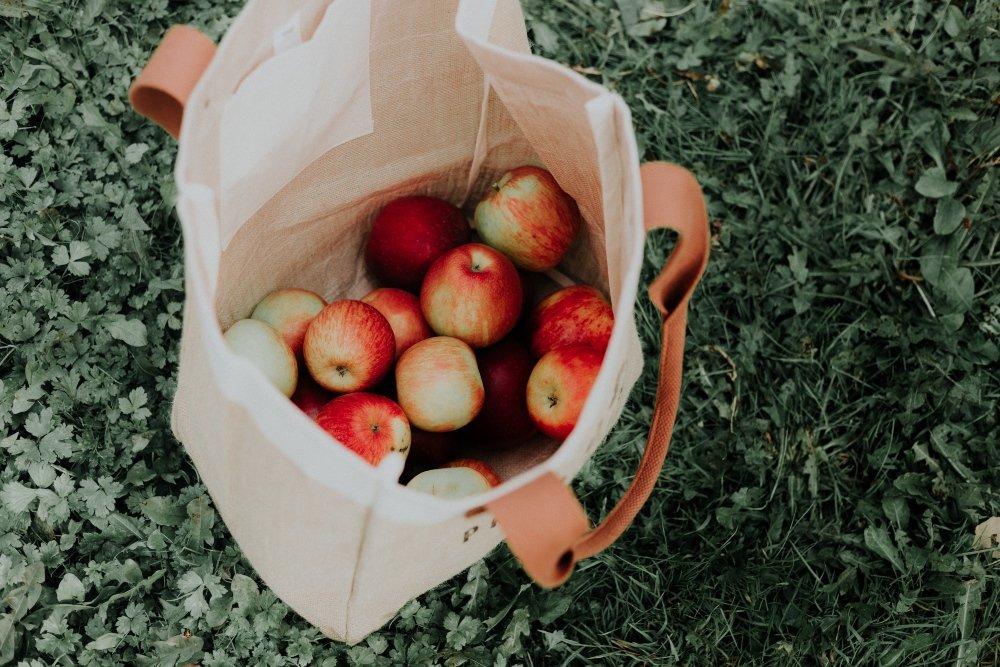 bolsa de tela con manzanas rojas en el interior sobre el césped; hábitos eco friendly