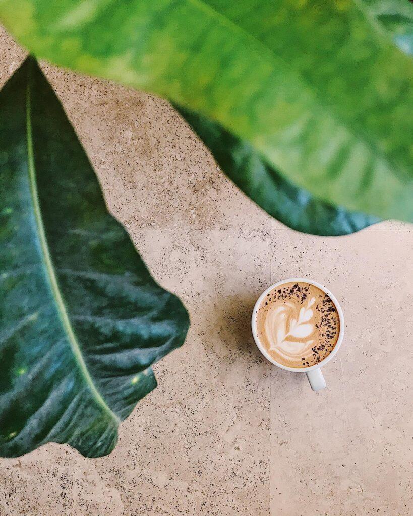 Café con planta.