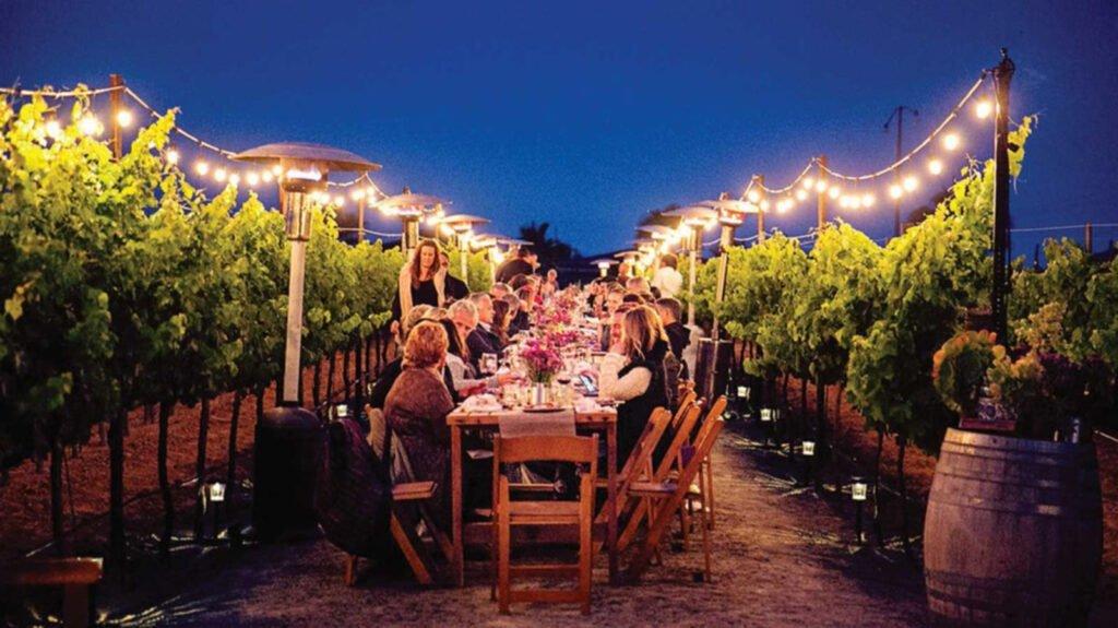 Mesa larga con centro de mesas de flores color morada. La mesa entre camino de viñedo y luces colgantes. Viñedos del valle