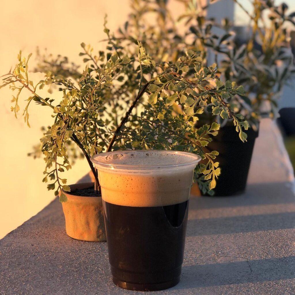 Vaso de cerveza color oscura en una barda junto a macetas con plantas.