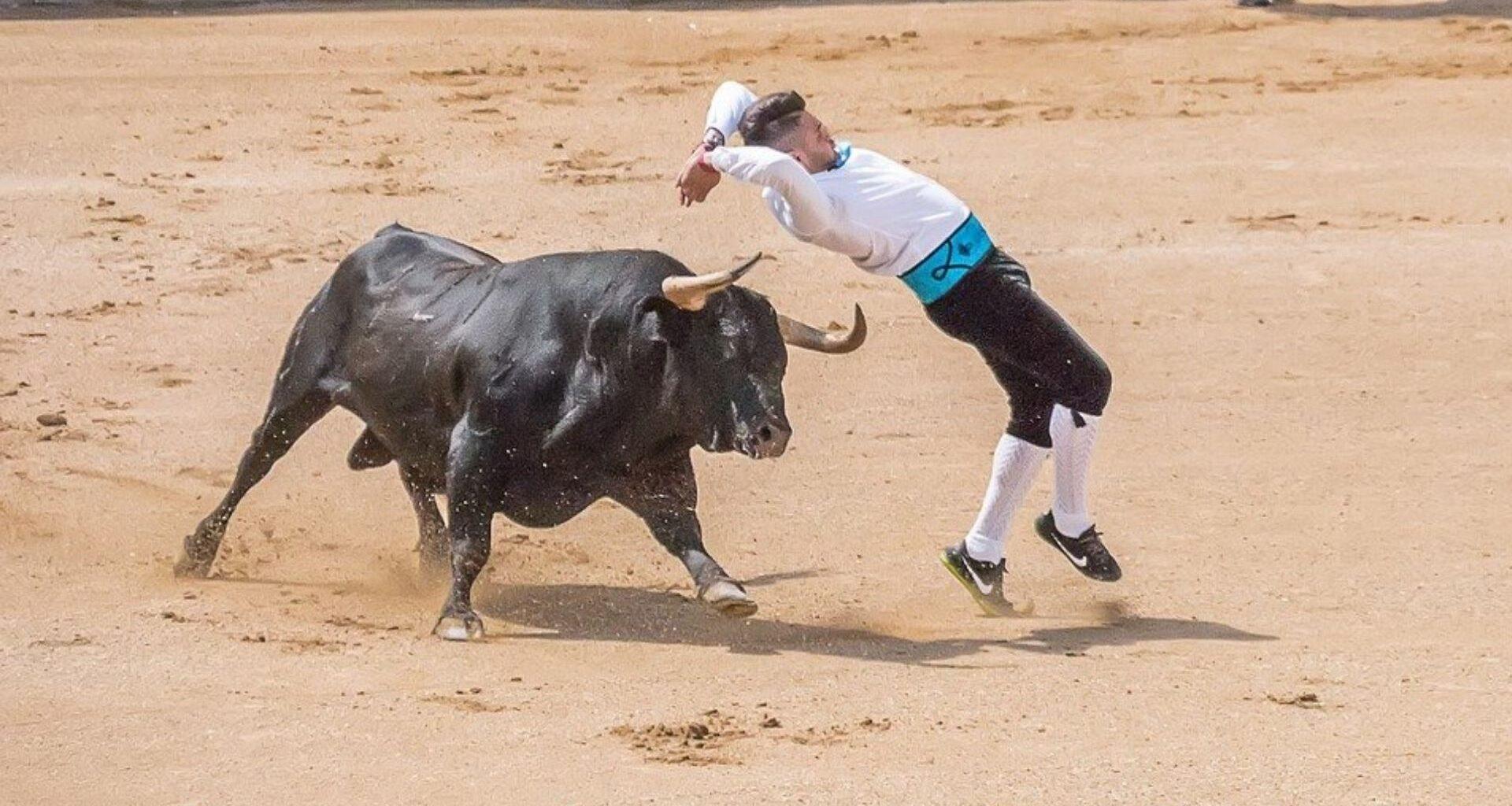toro se dirige a un torero que lo maltrata en la plaza