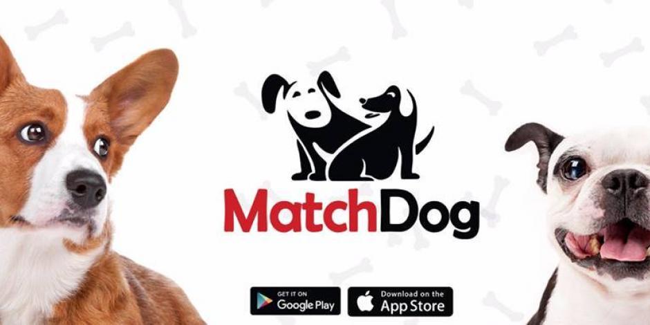 MatchDog App