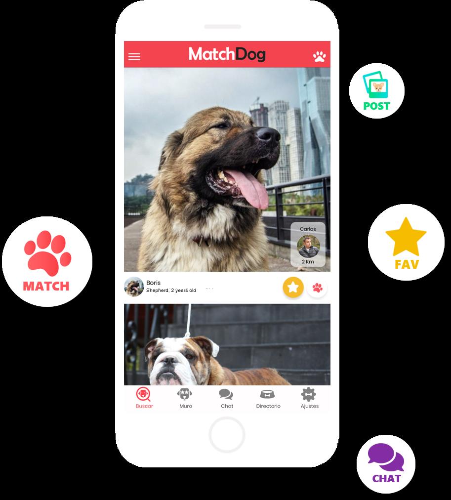 Pantalla MatchDog App