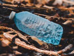 botella de plástico en el suelo de un bosque