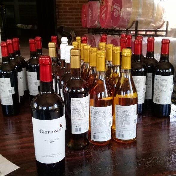 Venta de vinos Giottonini