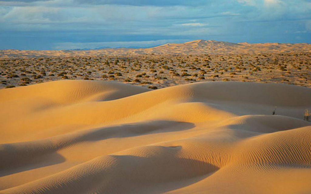 Buscan salvar el Desierto de Altar