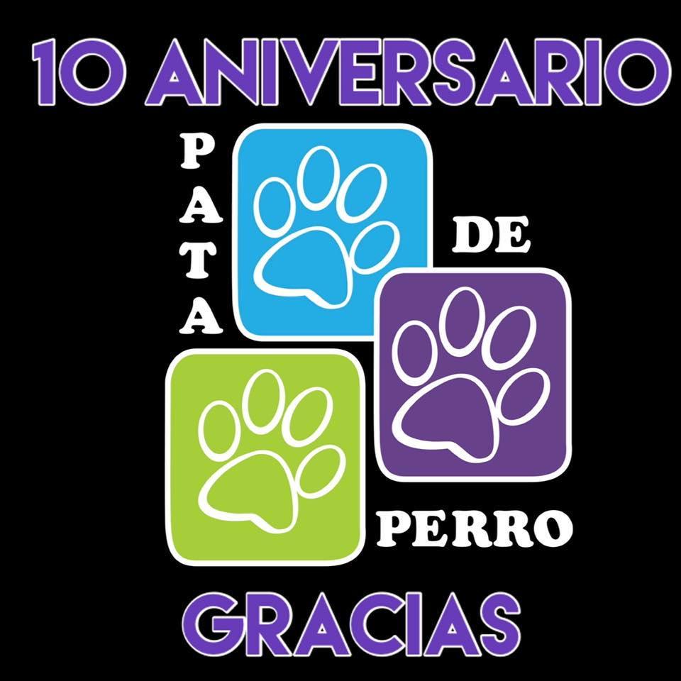 Pata de perro 10 aniversario