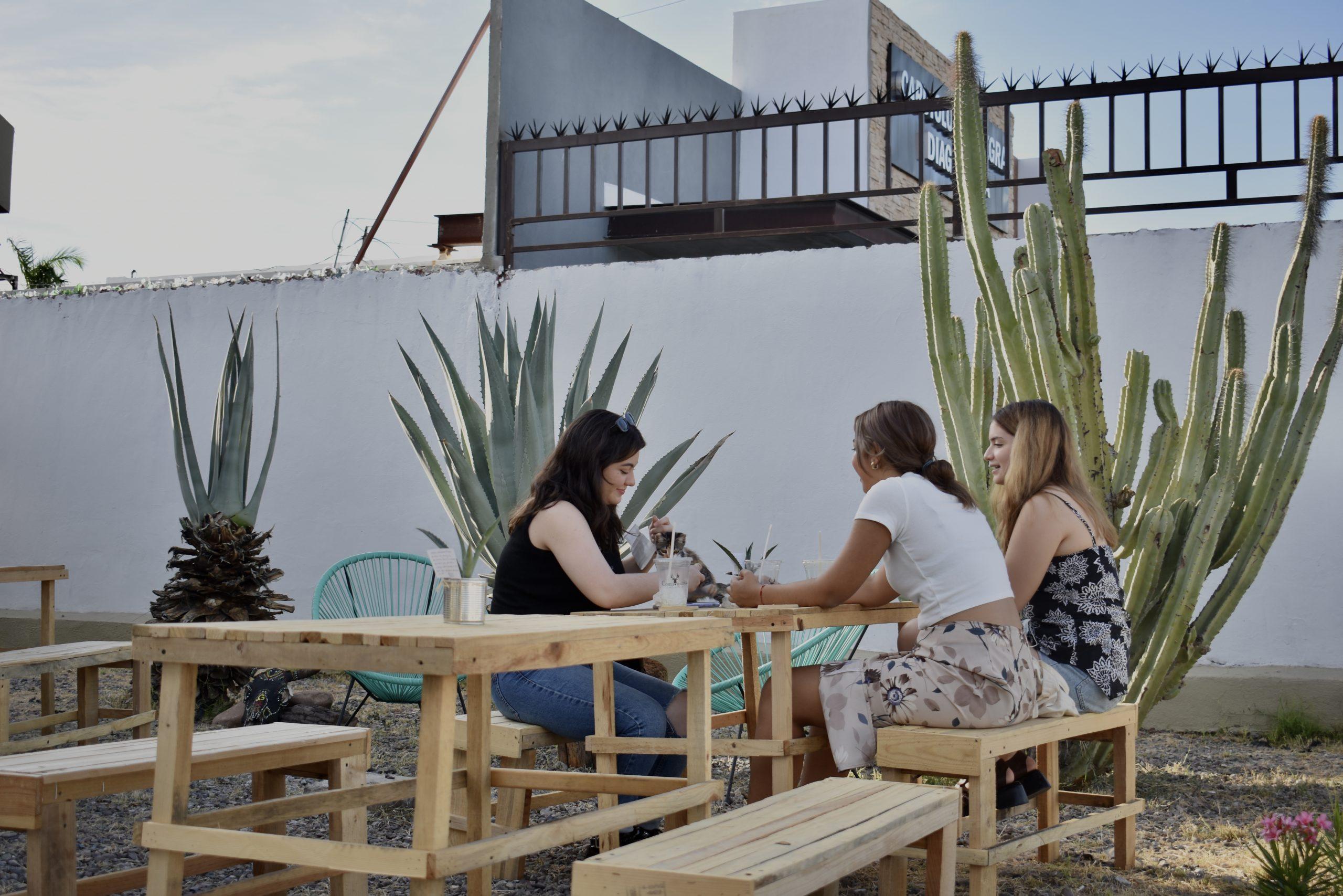 Grupo de amigas disfrutando de una bebida en patio de Cornamenta con un gatito.