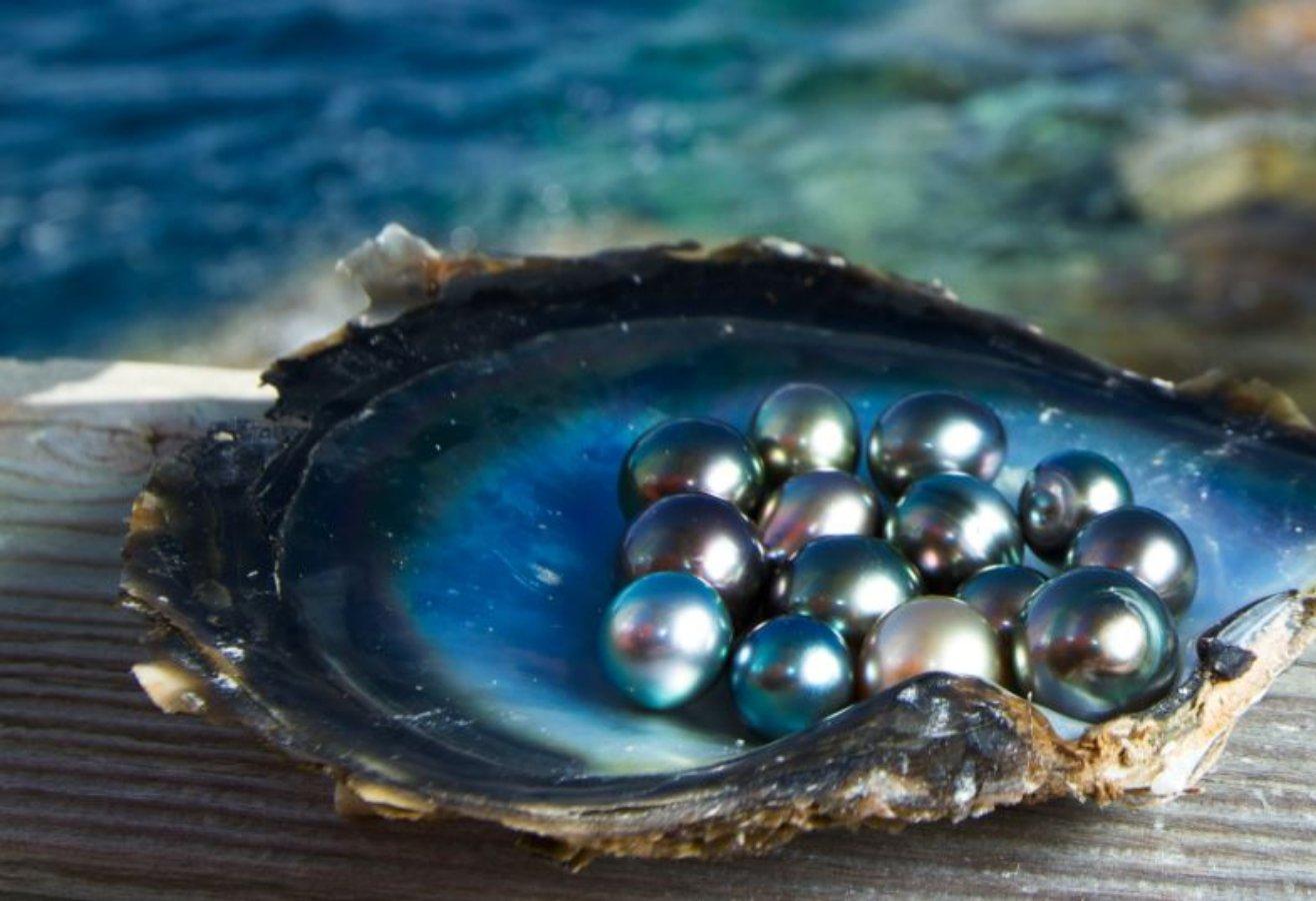 Perlas sudcalifornianas