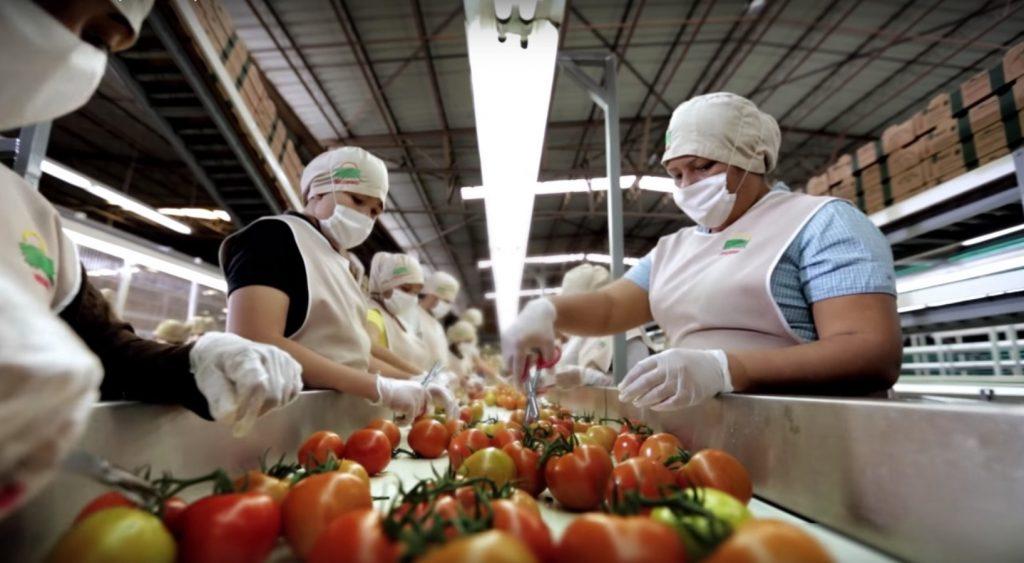 Generación de empleos formales en Sinaloa